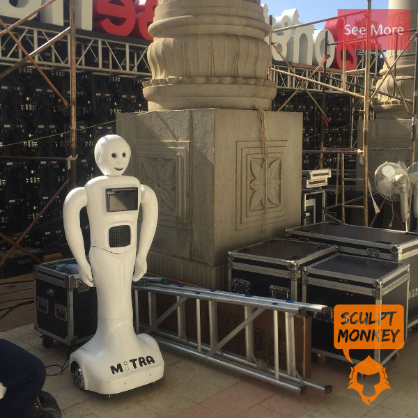 Mitra Robot Prototype - Preview
